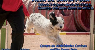 VI Trofeo de Agilidad Canina Villa de Santa Pola